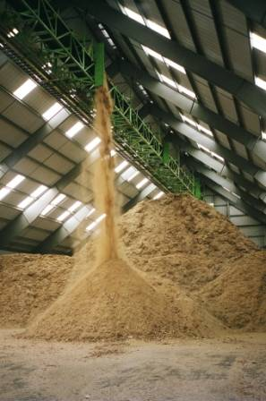 wood_chips_storage